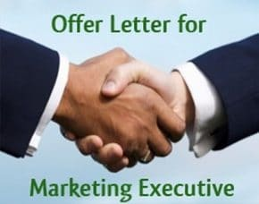 Marketing Executive Job Offer Letter