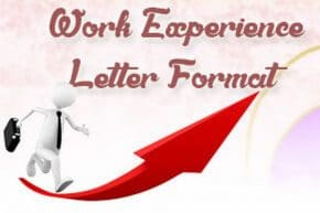 Work Experience Letter Format