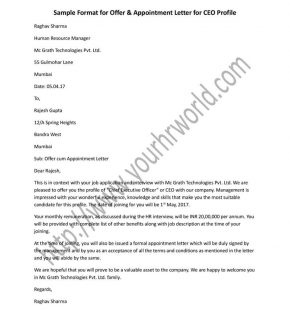 CEO Offer and Appointment letter sample format in word doc