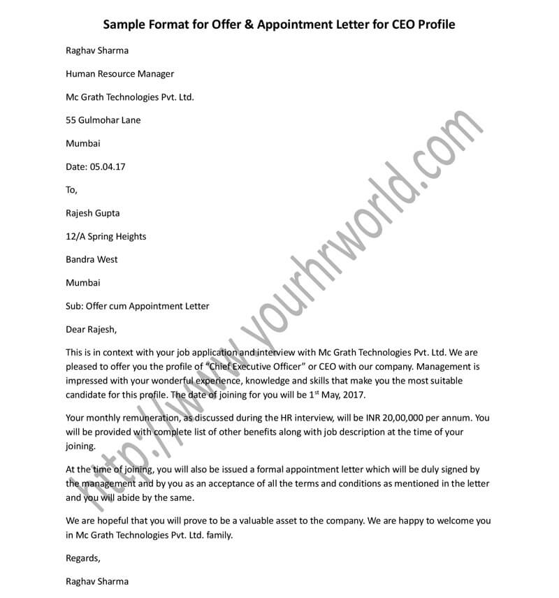 Offer Appointment Letter Format For Ceo Profile Hr Letter Formats